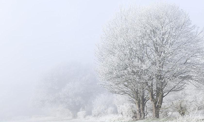 HIGHLY COMMENDED – Freezing Fog by Simon Bratt LRPS
